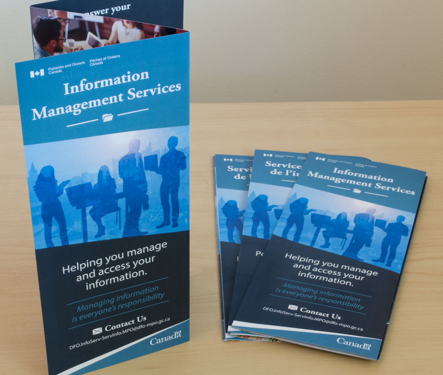 Information Management brochure